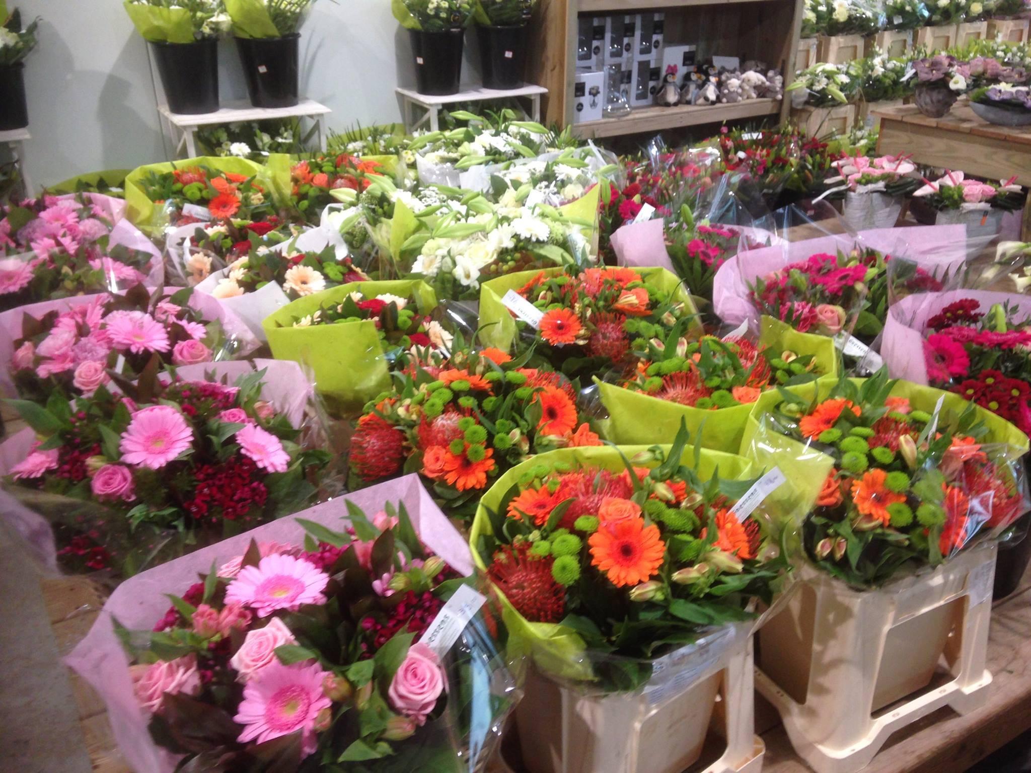 Mooie bloemen nabij Wetteren