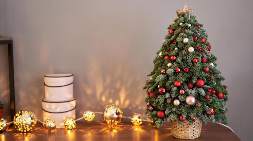 Kerstboomhuls en kerstboomrokken kopen - Tuincenter Vincent