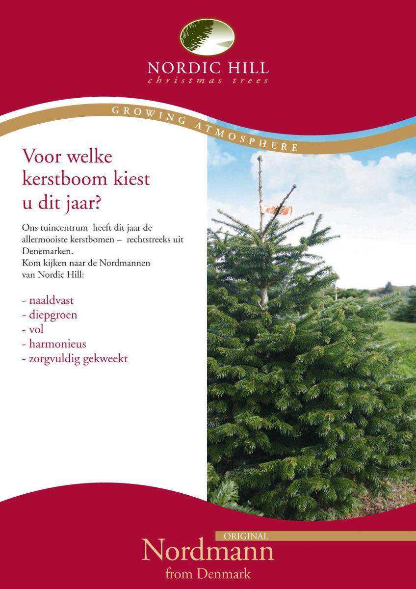 Echte Kerstbomen Nordmann Tuincenter Vincent