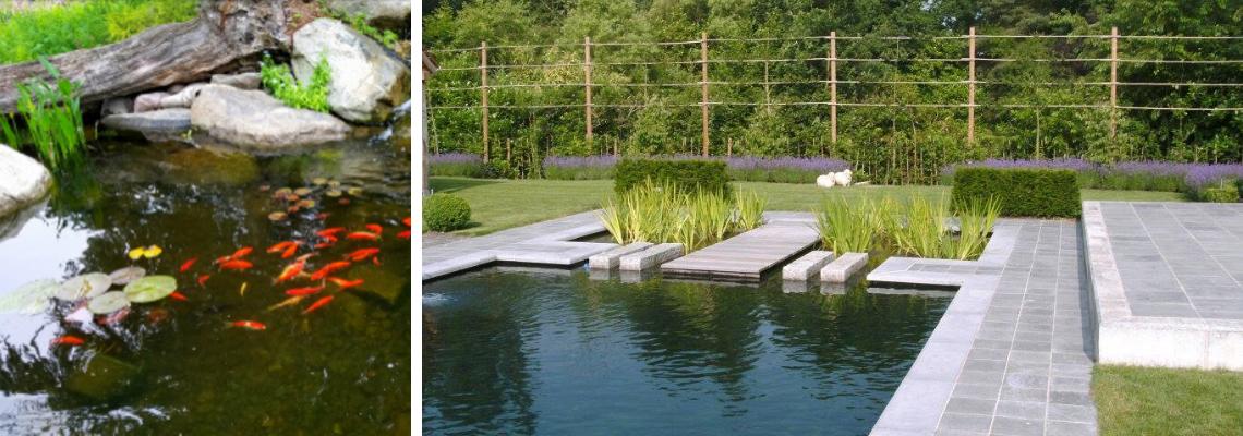 Vijverbenodigdheden Oost-Vlaanderen - Tuincenter Vincent