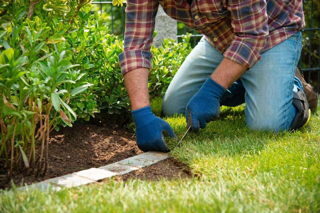aanleg gazon tuincentrum Vincent