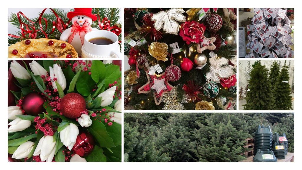 Kerstassortiment Tuincenter Vincent