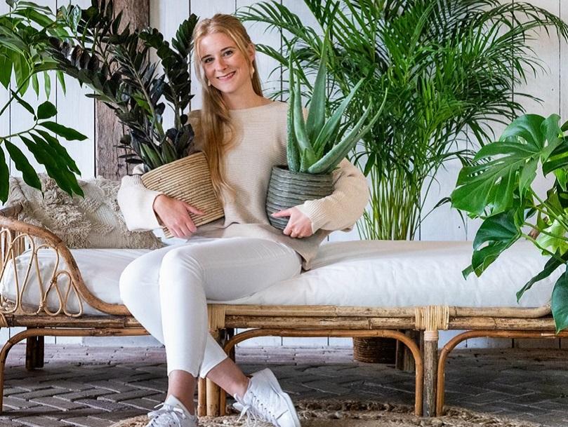 kamerplanten kopen Dendermonde