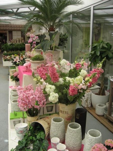 Bezoek een van de leukste tuincentra in Oost Vlaanderen, Tuincenter Vincent