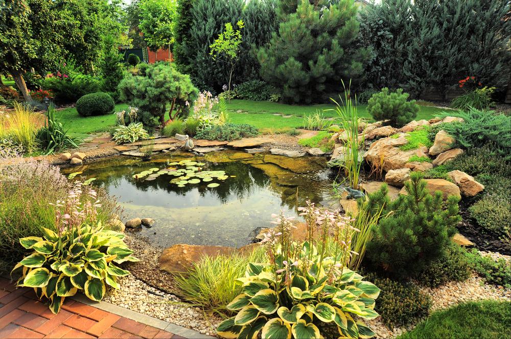 vijverfolie-epdm-kopen-tuincentrum