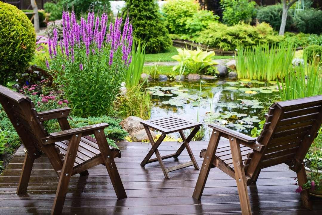 waterkwaliteit vijver Tuincentrum Vincent